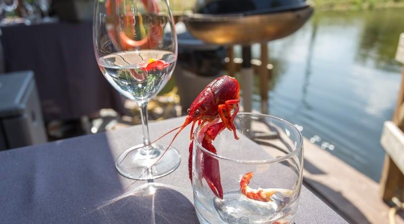 Kuk Buk pop up restorans uz Sabiles plosta Sabiles Vina svetkos (15)