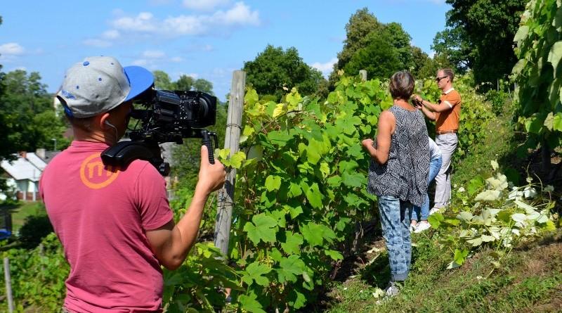 LNT televīzija Sabiles Vīna kalnā (6)
