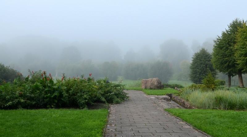 Miglas rīts Sabilē 29. augustā (4)