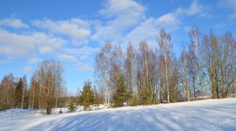 Sabile_ziemīgās ainavas ārpus pilsētas centra_2019_30 janvaris (3)