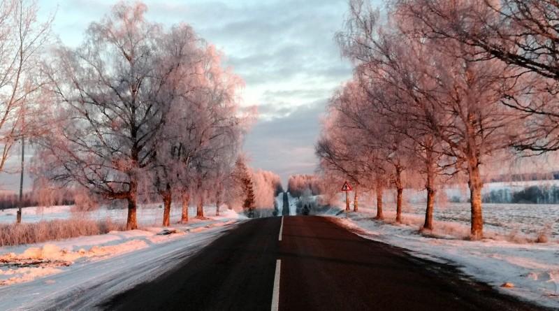 Sabiles - Stendes ceļš saullēktā_2019_22 janvāris (1)