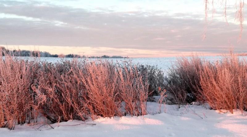 Sabiles - Stendes ceļš saullēktā_2019_22 janvāris (3)