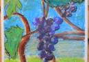 """Sabiles bērnu zīmēto vīnogu zīmējumu izstāde """"Sabiles odziņas"""" Sabiles kultūras namā oktobrī"""