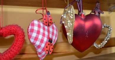 Sabiles bērnu bibliotēkā februārī apskatāma sirsniņu kolecija